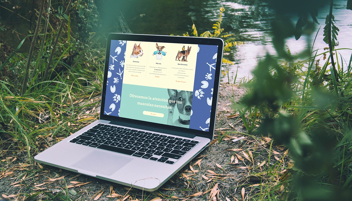 web veterinarios
